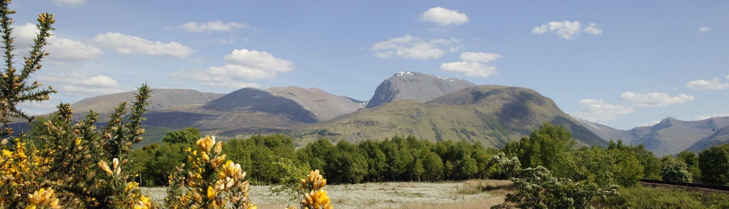 a summer scene of Ben Nevis and Glen Nevis from near the Caledonian Canal