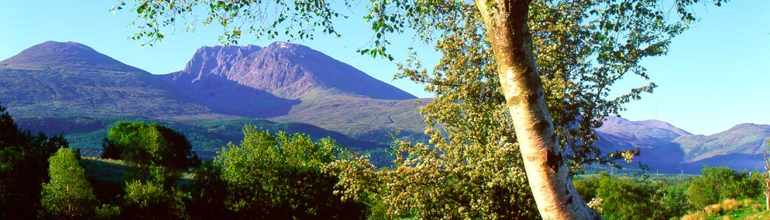 a local scene with Ben Nevis on an early summer morning.